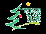Logo AFSNN